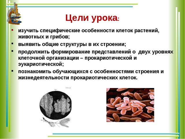 Цели урока: изучить специфические особенности клеток растений, животных и гри...