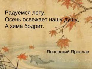 Радуемся лету. Осень освежает нашу душу, А зима бодрит. Янчевский Ярослав