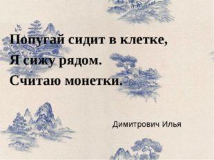 Димитрович Илья Попугай сидит в клетке, Я сижу рядом. Считаю монетки.