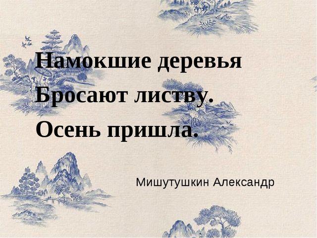 Мишутушкин Александр Намокшие деревья Бросают листву. Осень пришла.