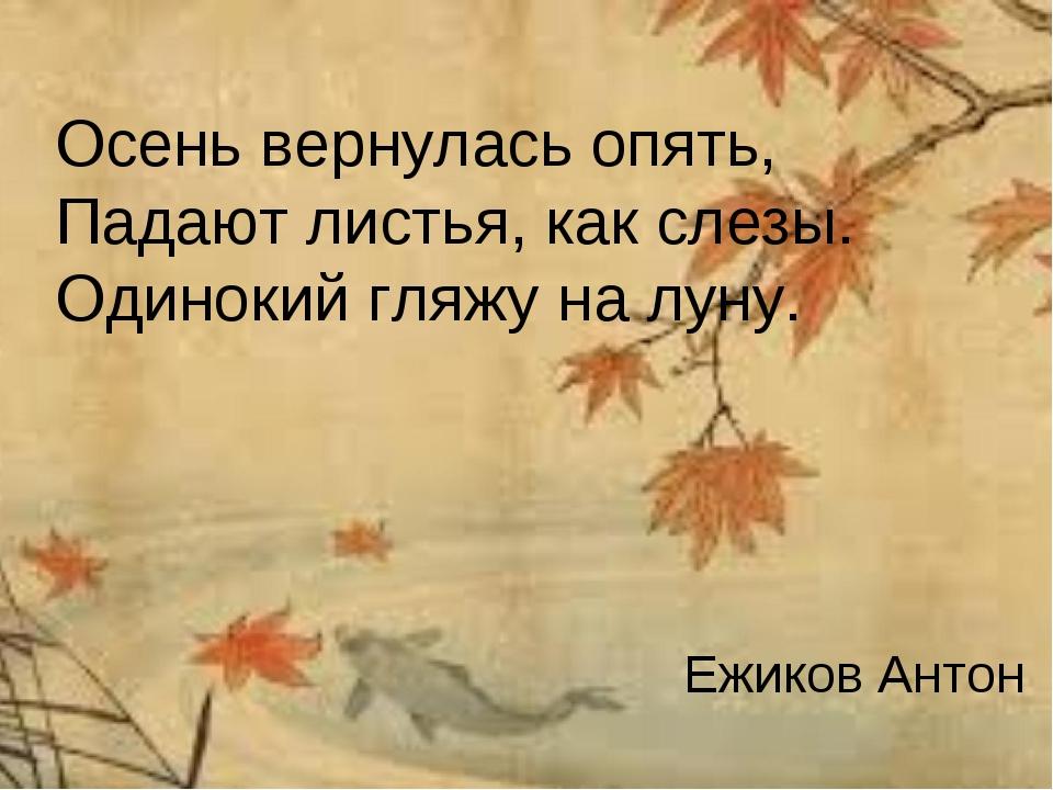 Осень вернулась опять, Падают листья, как слезы. Одинокий гляжу на луну. Ежик...