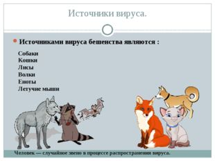 Источники вируса. Источниками вируса бешенства являются : Собаки Кошки Лисы В