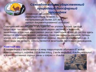 Сохондинский государственный природный биосферный заповедник «Немногие запове