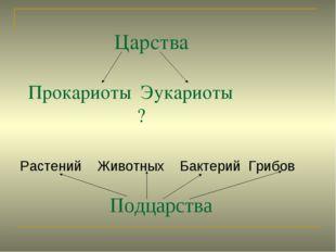 Царства Прокариоты Эукариоты ? Растений Животных Бактерий Грибов Подцарства