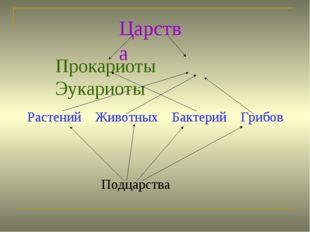 Царства Прокариоты Эукариоты Растений Животных Бактерий Грибов Растений Живот