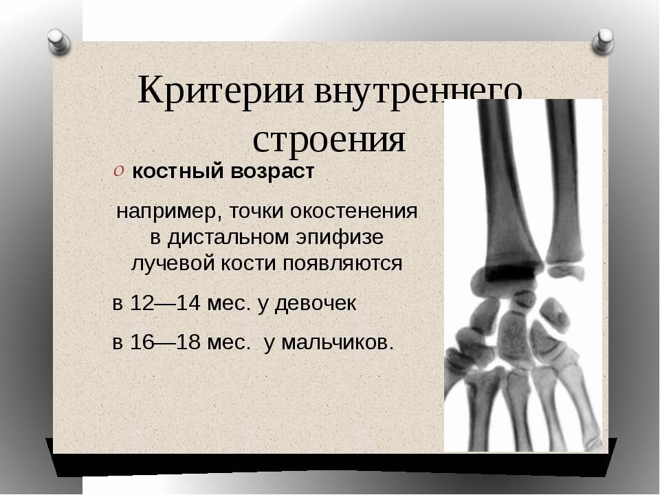 Критерии внутреннего строения костный возраст например, точки окостенения в д...