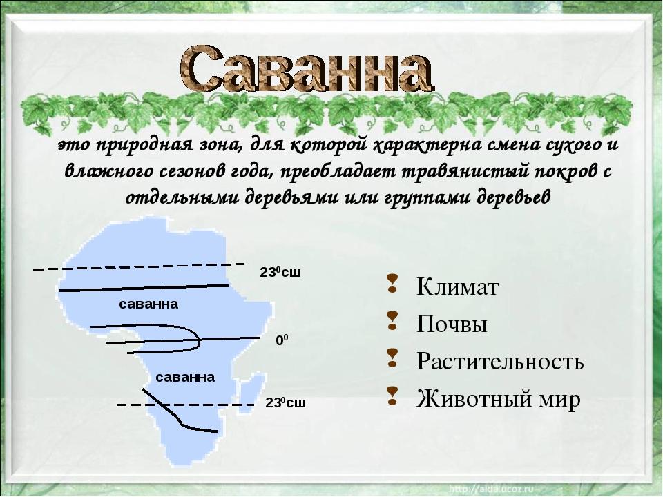 это природная зона, для которой характерна смена сухого и влажного сезонов г...