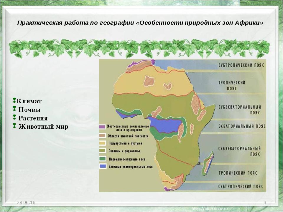 * * Климат Почвы Растения Животный мир Практическая работа по географии «Особ...