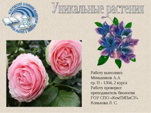 Работу выполнил: Меньшиков А.А гр. П - 1304, 2 курса Работу проверил: препода
