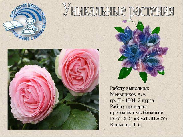 Работу выполнил: Меньшиков А.А гр. П - 1304, 2 курса Работу проверил: препода...