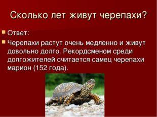 Сколько лет живут черепахи? Ответ: Черепахи растут очень медленно и живут дов
