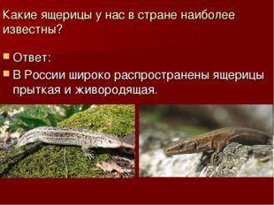 Какие ящерицы у нас в стране наиболее известны? Ответ: В России широко распро