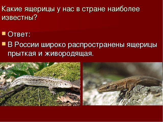 Какие ящерицы у нас в стране наиболее известны? Ответ: В России широко распро...