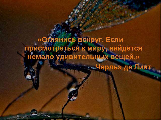 «Оглянись вокруг. Если присмотреться к миру, найдется немало удивительных вещ...