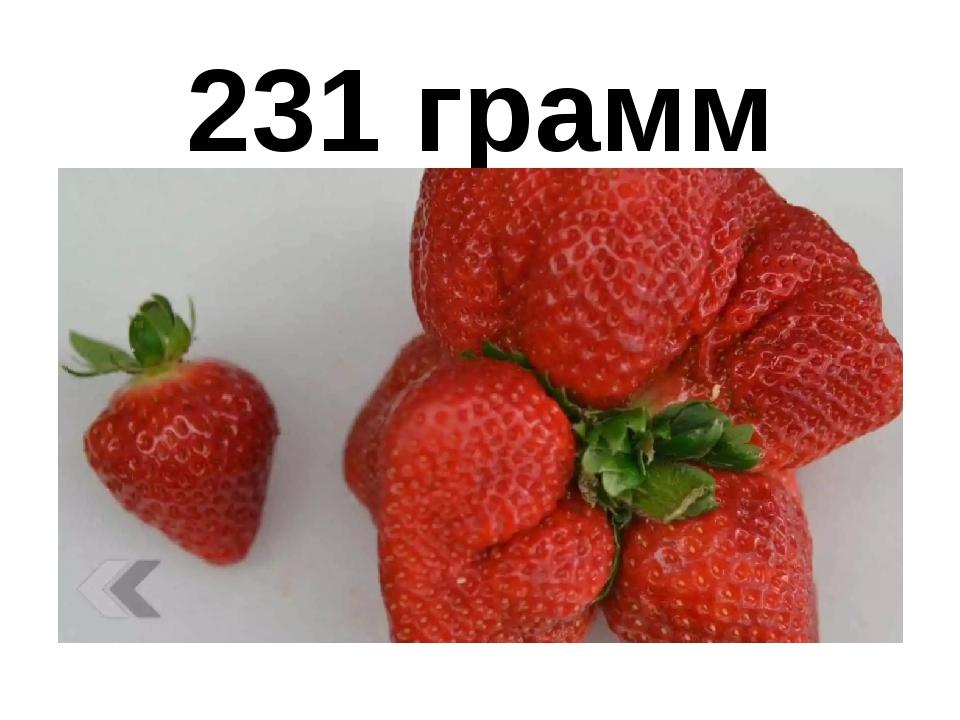 231 грамм