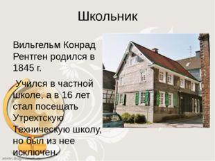 Школьник Вильгельм Конрад Рентген родился в 1845 г. Учился в частной школе, а
