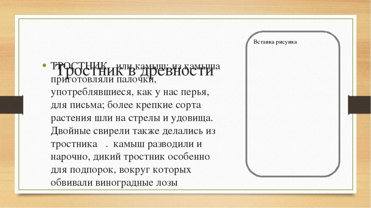 Тростник в древности ТРОСТНИК или камыш; из камыша приготовляли палочки, упот...