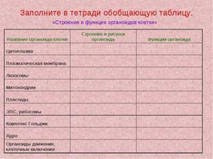 Заполните в тетради обобщающую таблицу. «Строение и функции органоидов клетки