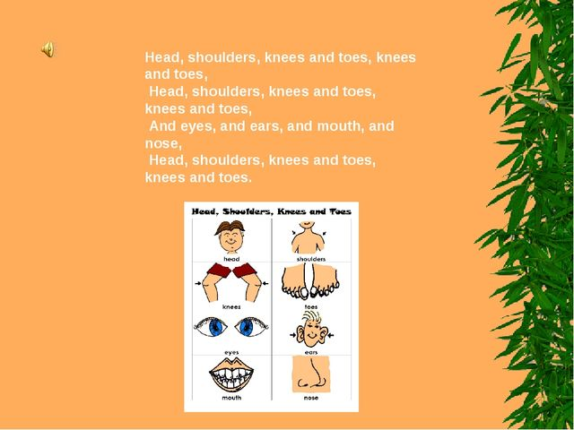 Head, shoulders, knees and toes, knees and toes, Head, shoulders, knees and t...