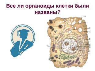 Все ли органоиды клетки были названы?