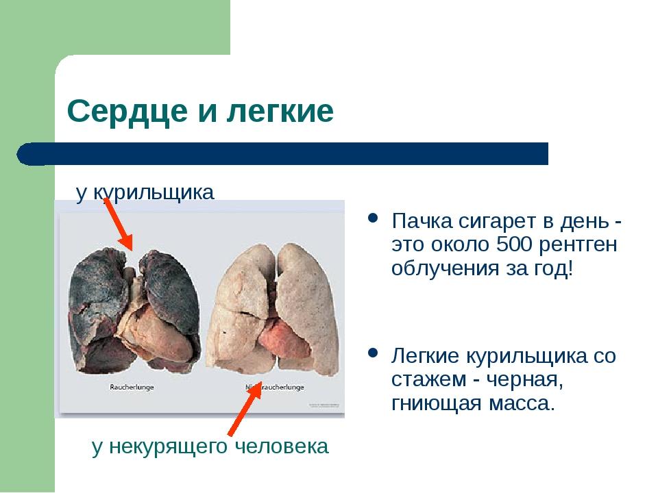 Сердце и легкие Пачка сигарет в день - это около 500 рентген облучения за год...