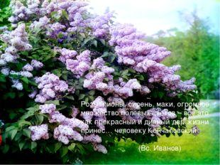 Розы, пионы, сирень, маки, огромное множество полевых цветов – все это как пр
