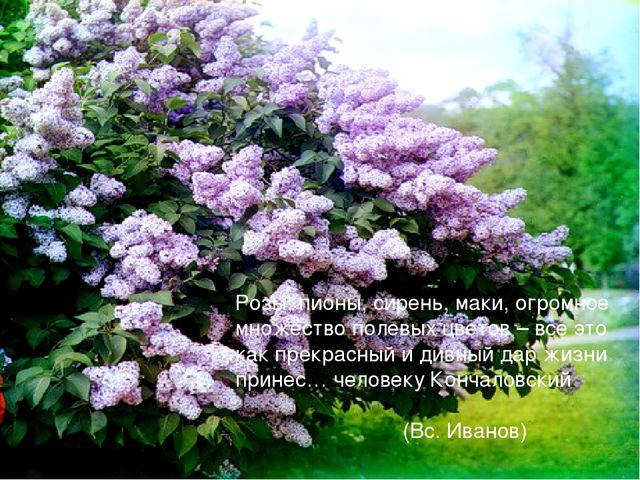 Розы, пионы, сирень, маки, огромное множество полевых цветов – все это как пр...