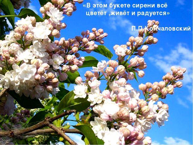 «В этом букете сирени всё цветёт ,живёт и радуется» П.П.Кончаловский
