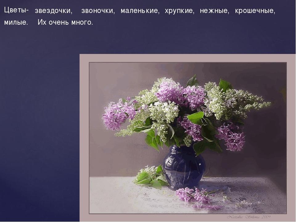 Цветы- звездочки, звоночки, маленькие, хрупкие, нежные, крошечные, милые. Их...