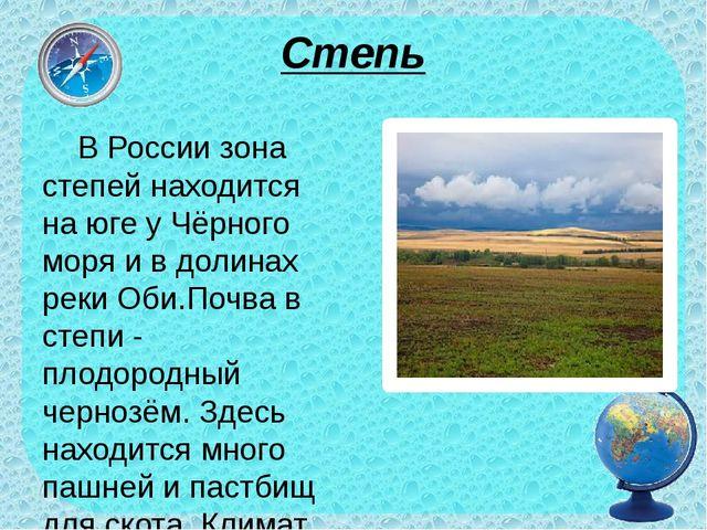 Степь В России зона степей находится на юге у Чёрного моря и в долинах реки О...
