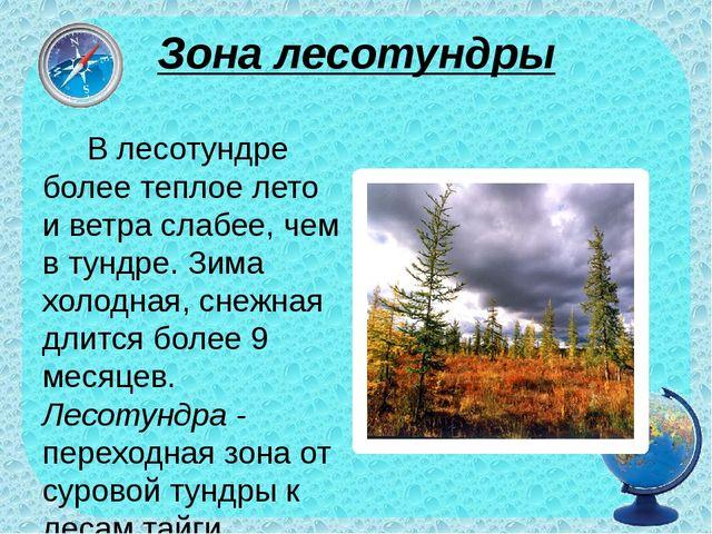 Зона лесотундры В лесотундре более теплое лето и ветра слабее, чем в тундре....