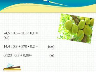 74,5 : 0,5 – 11,3 : 0,1 = (кг) 14,4 : 0,9 + 370 • 0,2 = (см) 0,123 : 0,3 + 0,