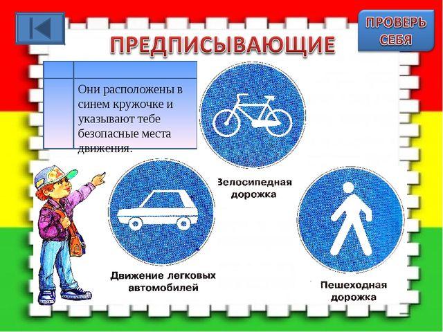 Они расположены в синем кружочке и указывают тебе безопасные места движения.