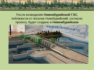 После возведения Нижнебурейской ГЭС, поблизости от поселка Новобурейский, сог