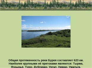 Общая протяженность реки Бурея составляет 623 км. Наиболее крупными её прито