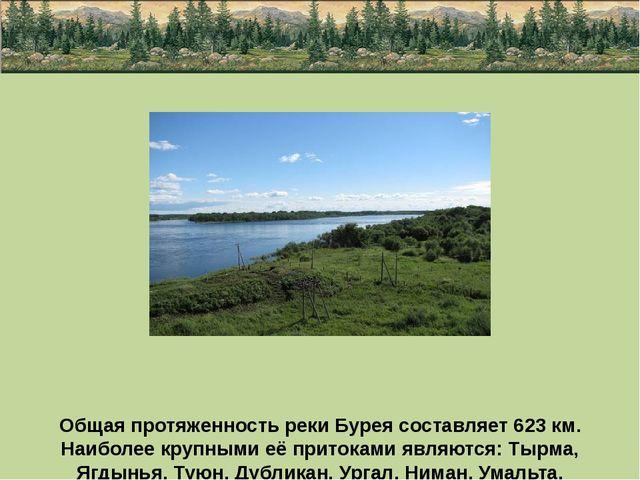 Общая протяженность реки Бурея составляет 623 км. Наиболее крупными её прито...