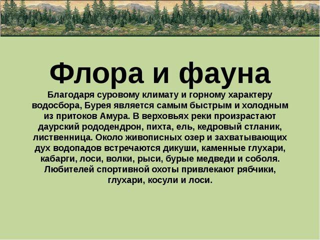 Флора и фауна Благодаря суровому климату и горному характеру водосбора, Бурея...