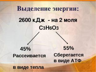 Выделение энергии: 2600 кДж - на 2 моля С3Н6О3 45% Рассеивается в виде тепла