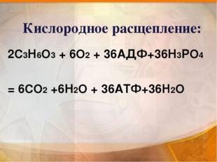 Кислородное расщепление: 2С3Н6О3 + 6О2 + 36АДФ+36Н3РО4 = 6СО2 +6Н2О + 36АТФ+3