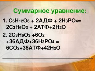 Суммарное уравнение: 1. С6Н12О6 + 2АДФ + 2Н3РО4= 2С3Н6О3 + 2АТФ+2Н2О 2. 2С3Н6