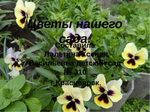Цветы нашего сада. Составила Лалетина Ксения Васильевна детский сад № 310 г К