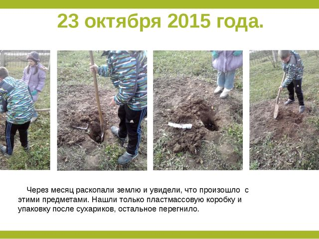 23 октября 2015 года. Через месяц раскопали землю и увидели, что произошло с...