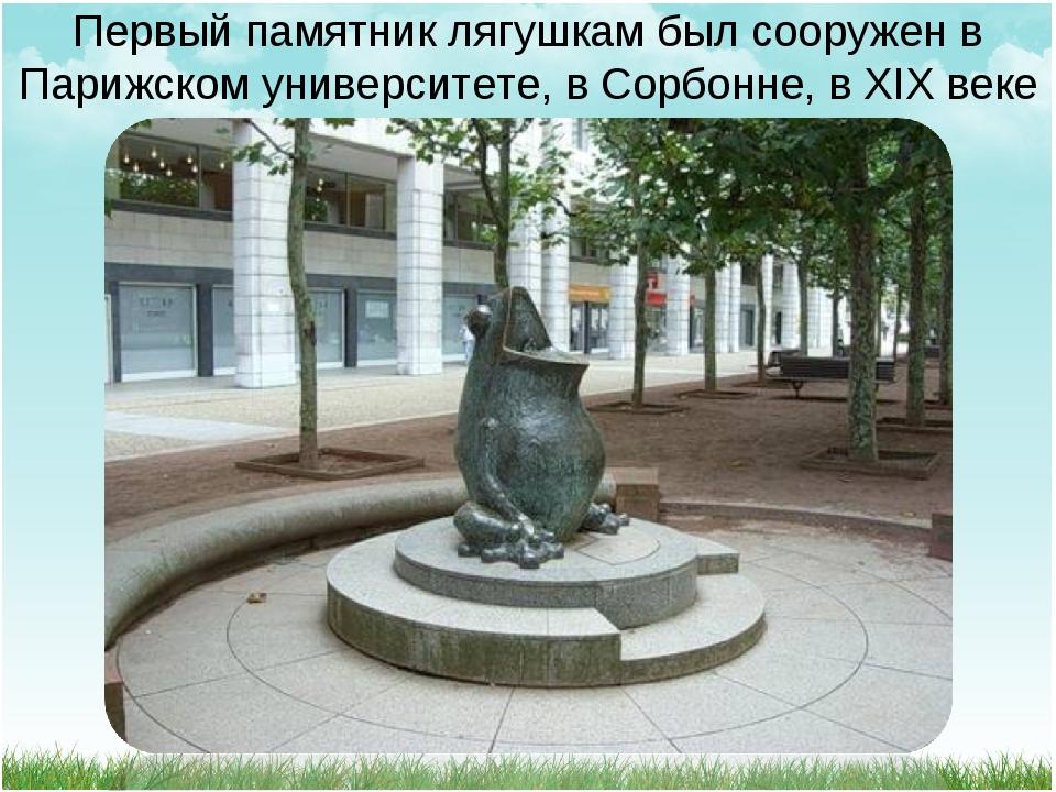 Первый памятник лягушкам был сооружен в Парижском университете, в Сорбонне, в...