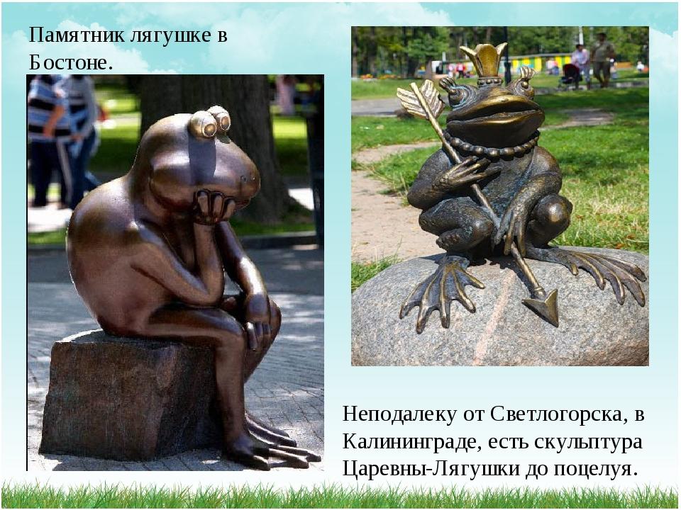Памятник лягушке в Бостоне. Неподалеку от Светлогорска, в Калининграде, есть...