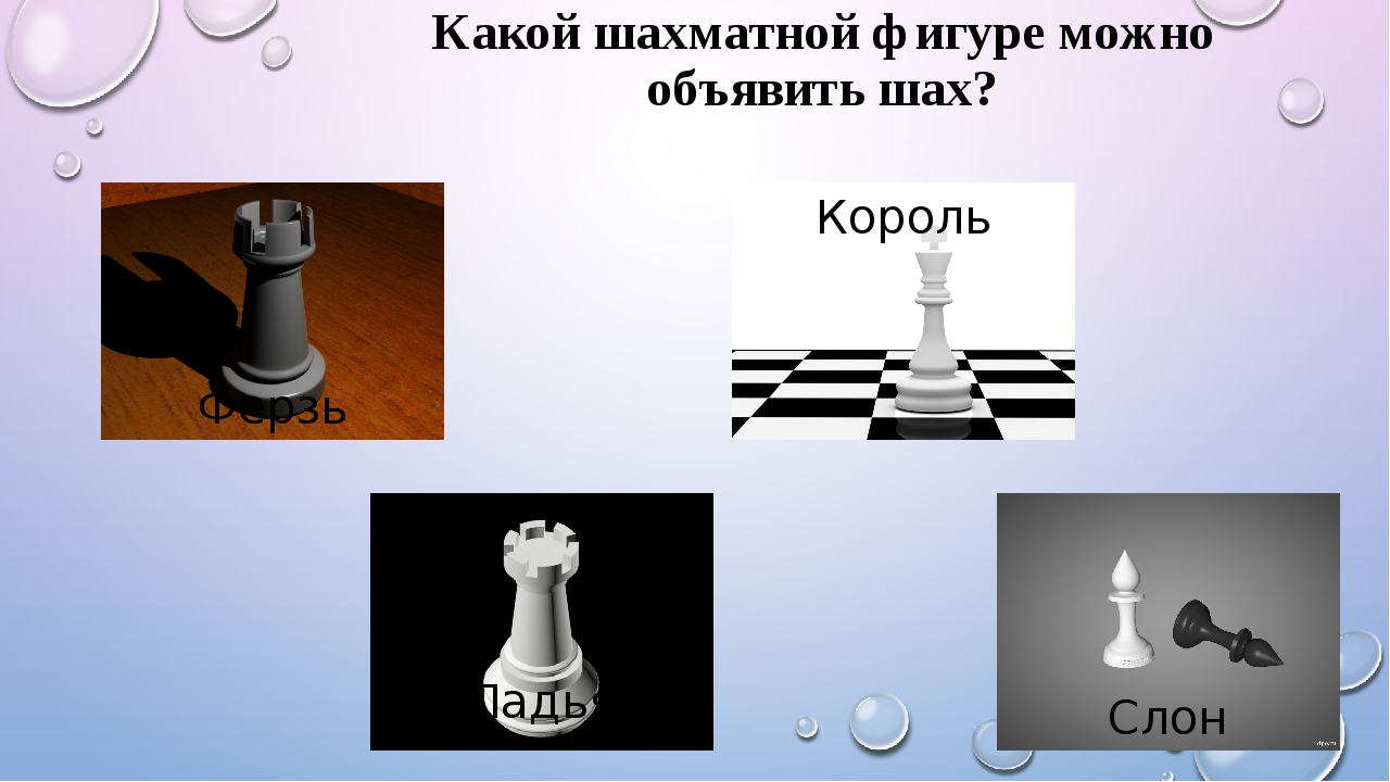 Какой шахматной фигуре можно объявить шах? Ферзь Король Ладья Слон
