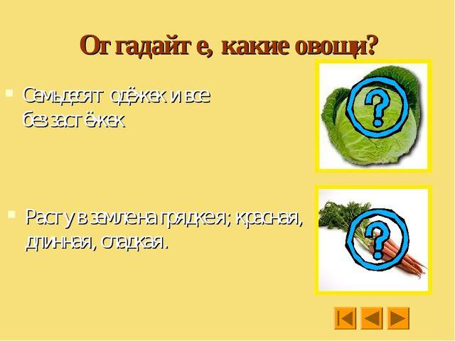 Отгадайте, какие овощи? Семьдесят одёжек и все без застёжек Расту в земле на...