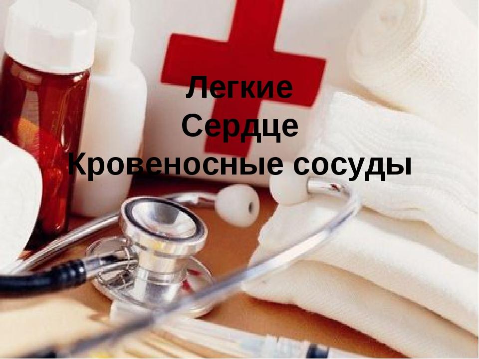 Легкие Сердце Кровеносные сосуды