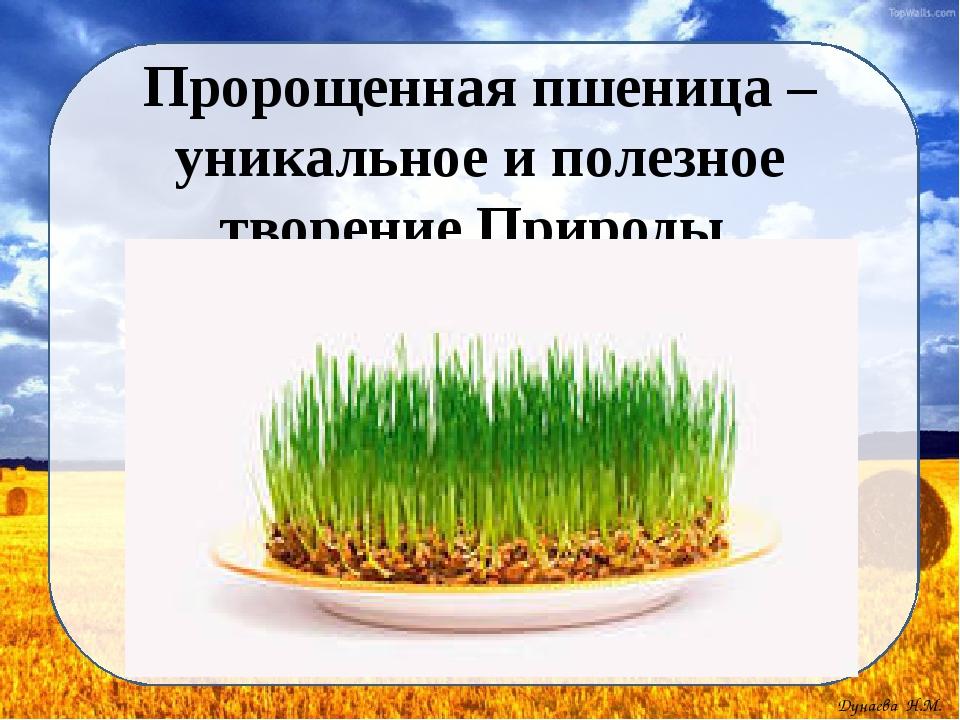 Пророщенная пшеница – уникальное и полезное творение Природы Дунаева Н.М.
