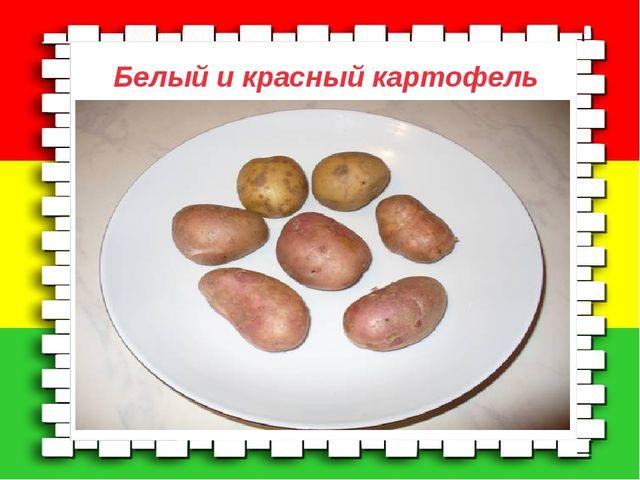 Моё первое интервью. Белый и красный картофель №  Блюда из картофеляКол-во...