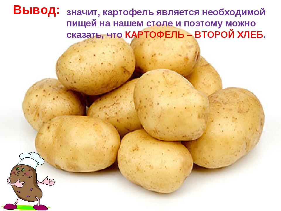 Вывод: значит, картофель является необходимой пищей на нашем столе и поэтому...
